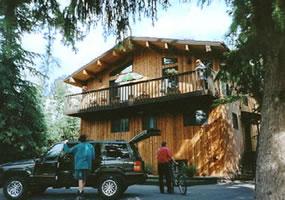 Treetops Banff B&B